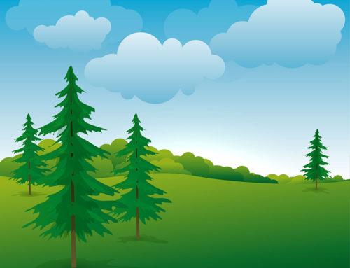 Valorizzazione e gestione delle risorse ambientali e naturali